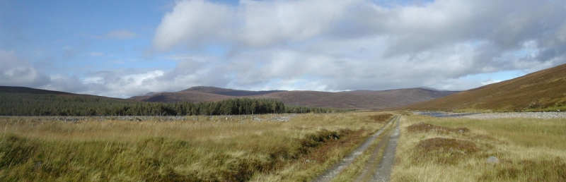 Cairngorms Path